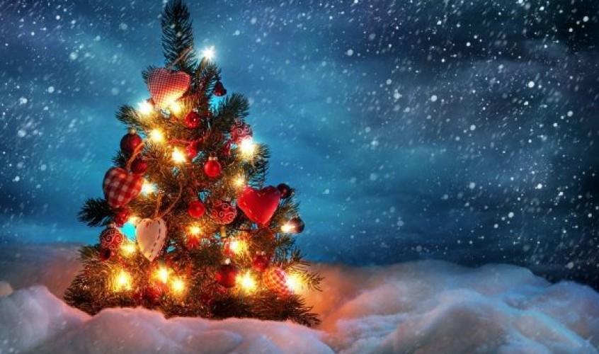 Tallinn Cup soovib kôigile meeldivat jõuluaega ja väravaterohket uut aastat!